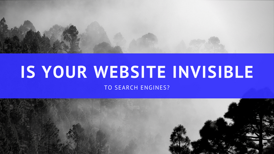 Is your website invisible to the search engines?